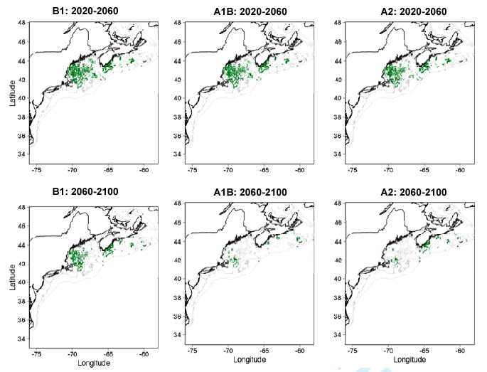 Fig. 3: Projected favorable cusk habitat in 2020-2060 under and 2060-2100 under three different climate scenarios (B1 = low emissions, A1B = moderate emissions, and A2 = high emissions).