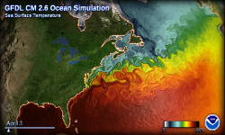 IMAGE FOR NORTH ATLANTIC SST FROM CM26 RESCALED 250 150