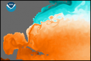 [Gulf Stream SST simulated by GFDL CM2.4 model]
