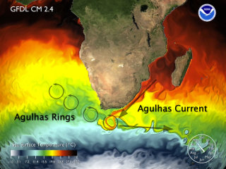 [Agulhas Rings from GFDL CM2.4 model Report]