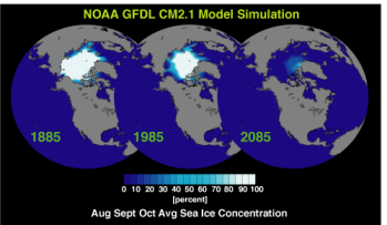 [Arctic Sea Ice simulation (small)]